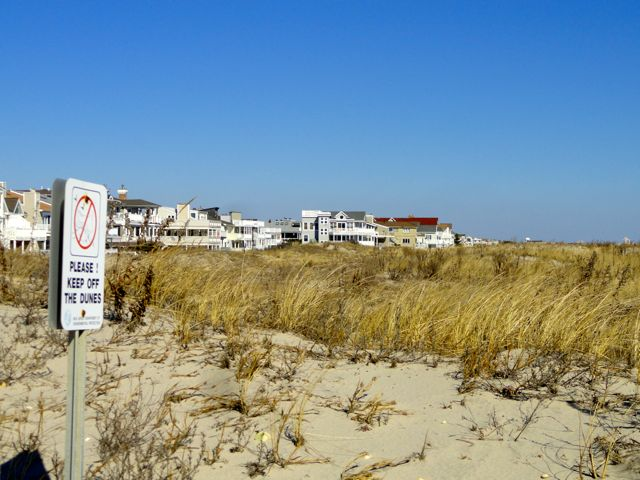 Ocean city ready to take property from 10 beach project for Ocean city nj surf fishing report