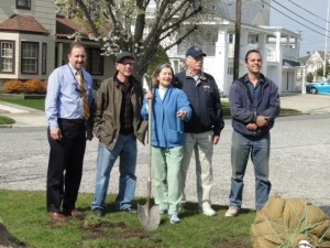 Shade Tree Committee members Joe Clark, Steve Wajda, Mary Lou Hayes, Rick Mendham and Mike Lehman help plant at thundercloud plum at a public intersection near the Northpoint Lagoon.