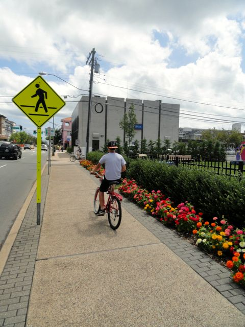 Irrigated Grass Area At Curbside May Become New