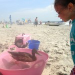 At 32nd Street: a Duck Who Hangs With the Beach Crowd