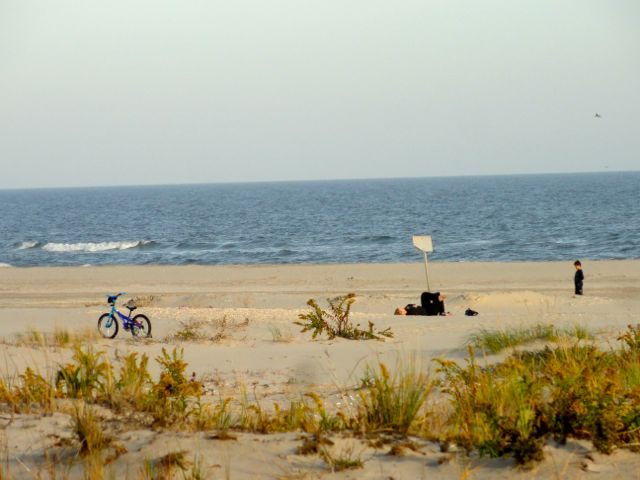 Ocean city things to do this weekend ocnj daily for Ocean city nj surf fishing report