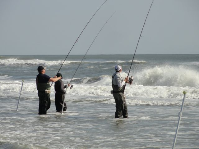Surf fishing nj for Surf fishing nj
