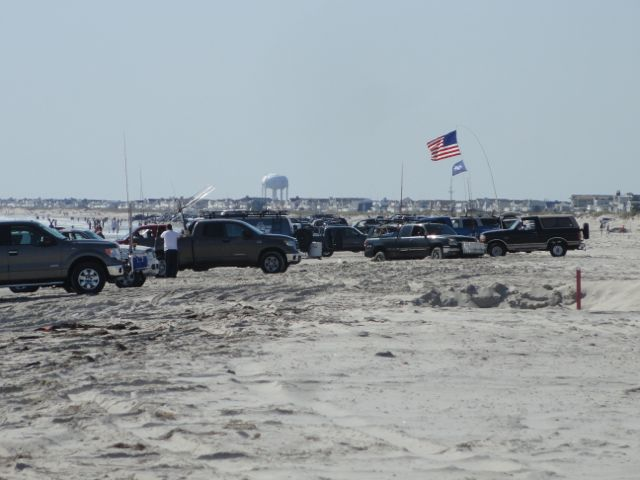 Ocean city fishing club s 47th annual surf tourney draws for Surf fishing nj
