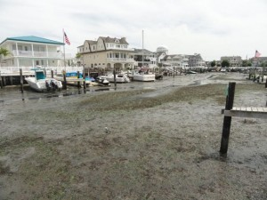 Low tide at Snug Harbor on Thursday, Aug. 27, the day City Council approved spending more than $997,000 to make it six feet deeper.