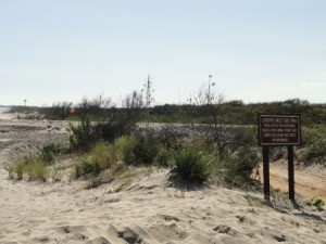 The entrance to Corson's Inlet State Park will now include a dune crossover.