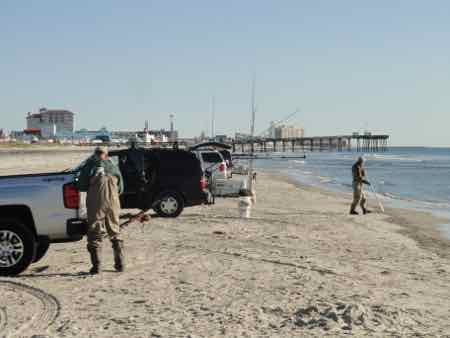 Two teams tie in 48th annual o c surf fishing tournament for Cape henlopen fishing report