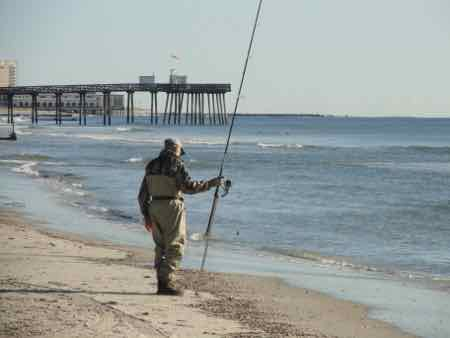 Oc fishing club holds 49th annual surf fishing tournament for Surf fishing nj