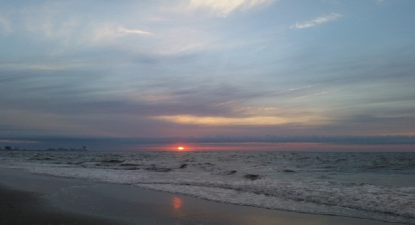 Today s beach report ocnj daily for Ocean city nj surf fishing report
