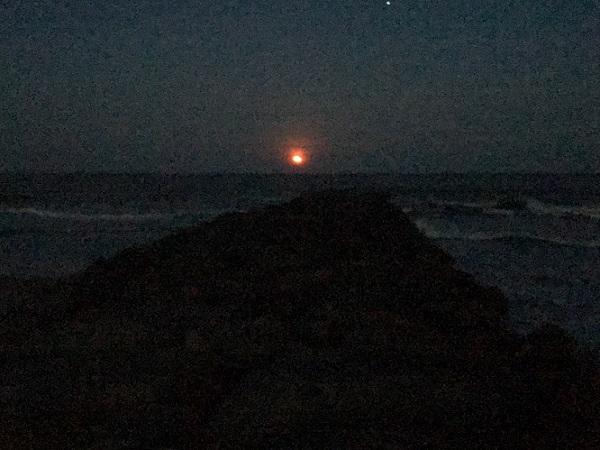 pink-moon-3-4